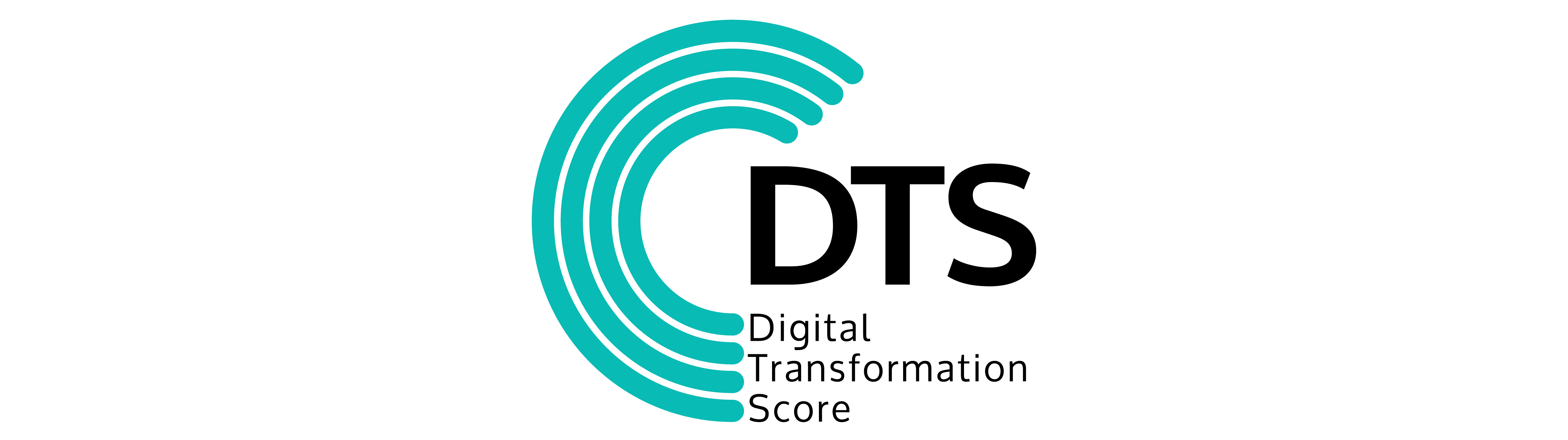 Digital Transformation Score